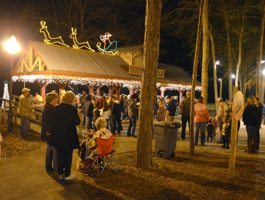 Albany Christmas Lights