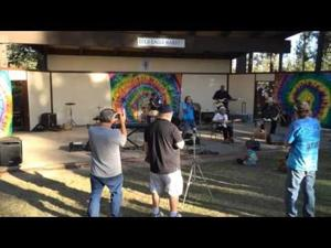 Brownsville Blues Festival