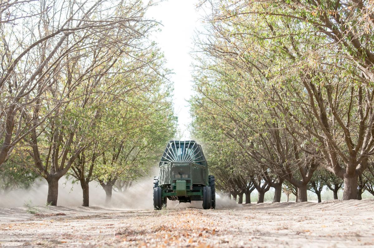 Farm land in Kern is down, but don't fret