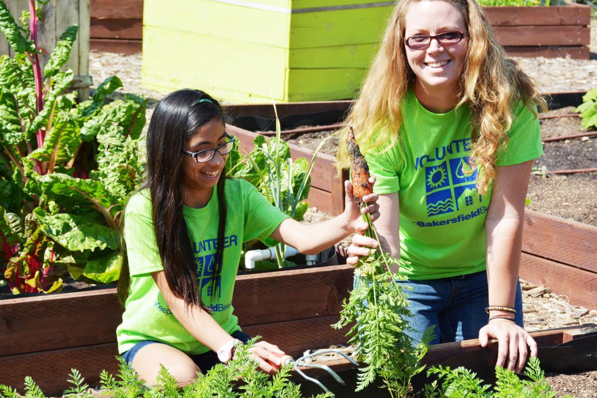 Seeds of Inspiration Community Garden