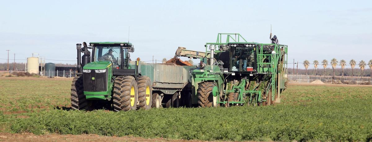 Grimmway Farms to lay off 384 employees