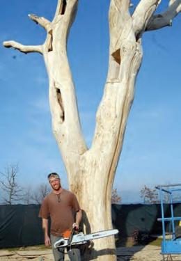 Chainsaw sculpts old tree into new lakefront art piece