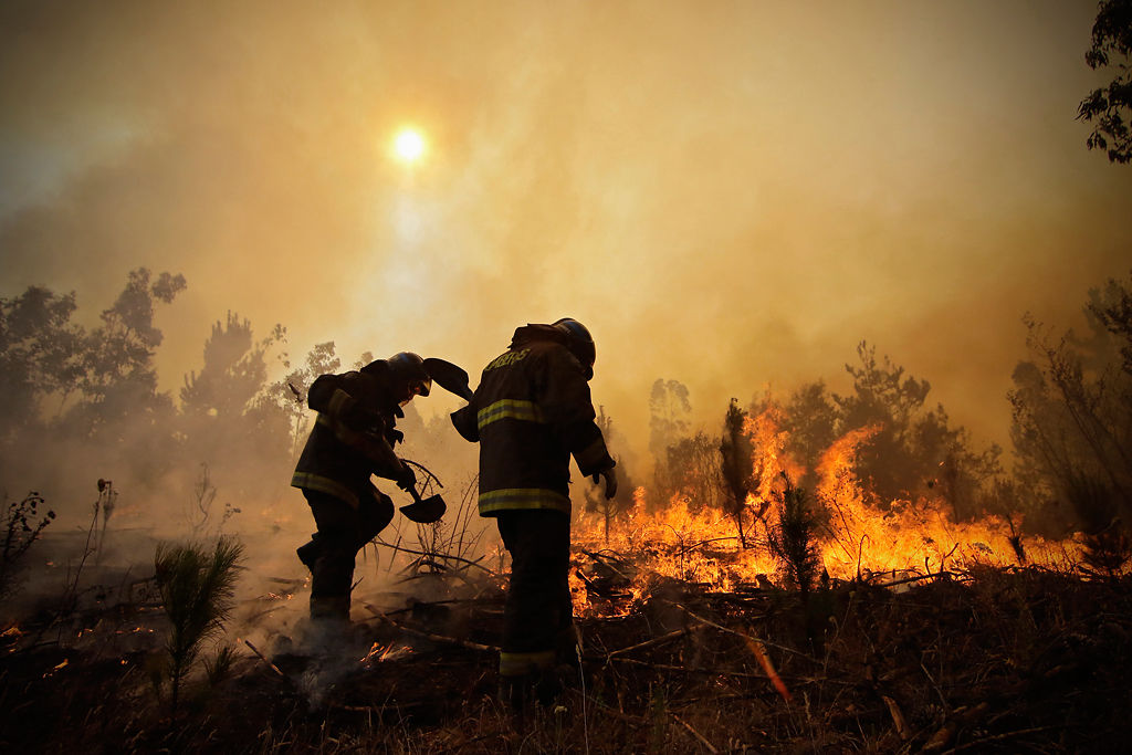 Chile wildfires: At least 10 die in catastrophe