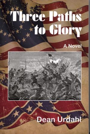 Novel goes to Civil War's front lines with Minnesota's troops