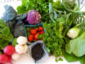 Local growers listed in new directory