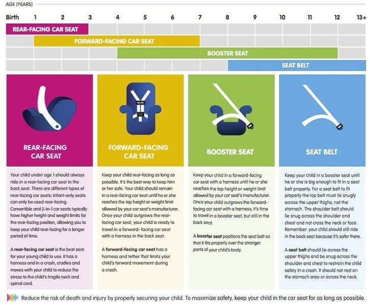 car seat safety gcf family support services
