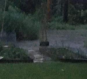 052716 storms thursday photo 5