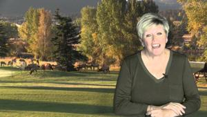 Estes Park News Weekend Report 10/2/2015