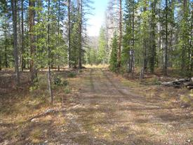 <p>Now that the Johnson Property is part of Rocky Mountain National Park, this access road will be removed and the land returned to its natural state.</p>
