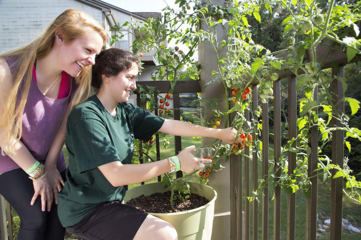 Seven Reasons Why Millennials Love Gardening And You Should Too Articles