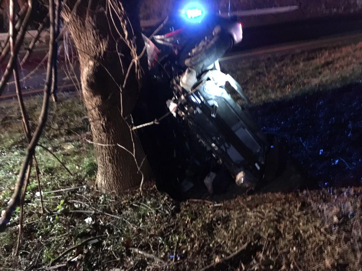Updated woman 19 dies after james madison highway crash for James madison pets