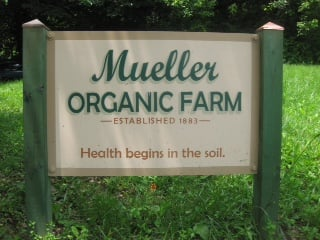 Mueller Organic Farm