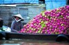 Fall For The Flavors of Vietnam