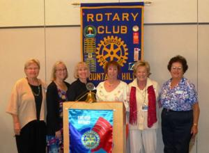 Rotary and mentors