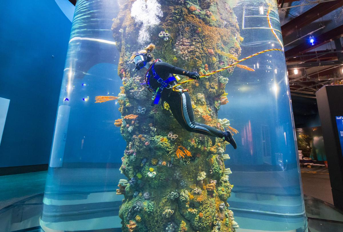 Moody Gardens Nears Aquarium Pyramid S Grand Reopening