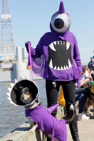 Photos: 18th annual Krewe of Barkus and Meoux Parade