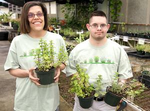 Sunshine Center's plant sale puts more greens on plates