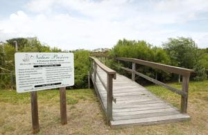 Lafitte's Cove Nature Preserve
