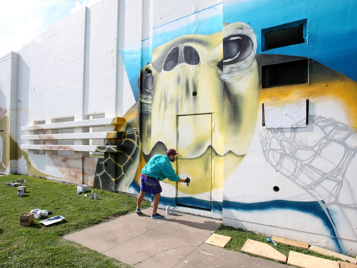 Mural of sea turtles taking shape at Menard Park