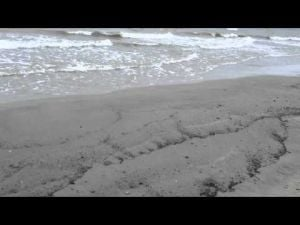 Oil washes up on Texas City Dike beach
