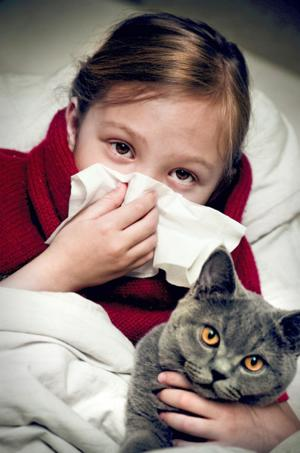 Cat Allergy Relief