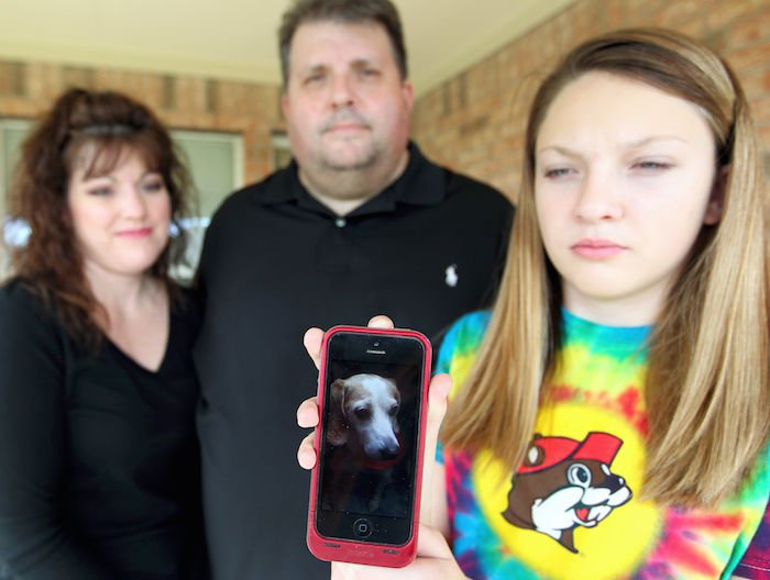 Family dog killed by neighbor's pit bulls