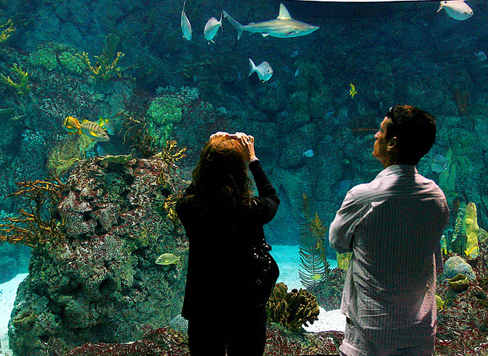 Park board approves $58M in Moody Gardens renovations