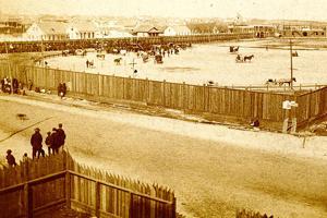 At the old ballgame: Remembering Galveston's Beach Park