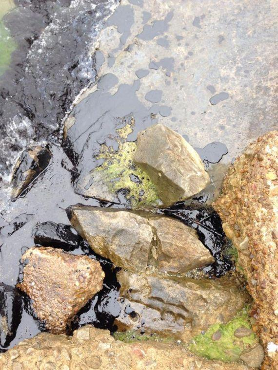 Oil washes up on Galveston's East End