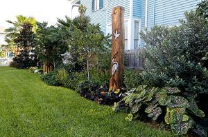 Beautiful Backyards: Zimmerman