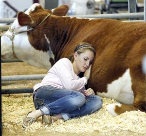 Fairgrounds abuzz in preparation for county fair