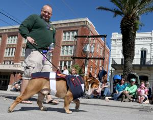 Krewe of Barkus and Meoux and the Children's Parade