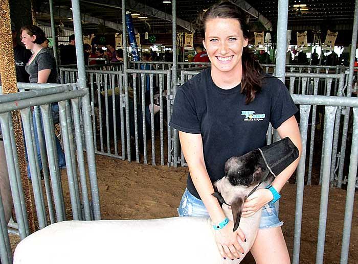 Lamb-sitting similar to baby-sitting