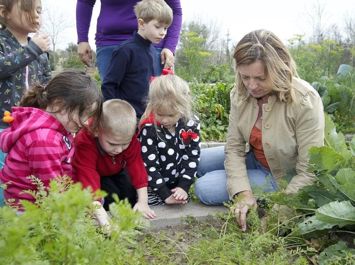 Volunteers feed county through community gardens