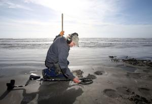 Treasure hunters find slew of foreign coins on beach