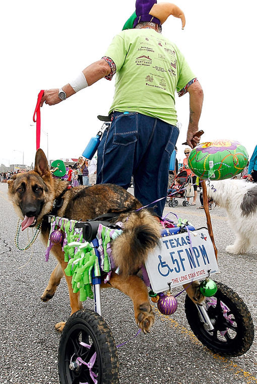 Krewe of Barkus and Meoux Parade