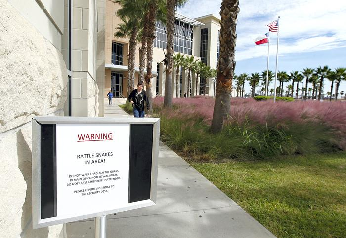 Beware of rattlesnakes outside Courthouse