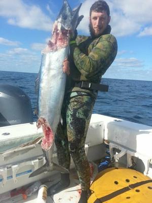 Angleton spear fisherman becomes prey instead of predator