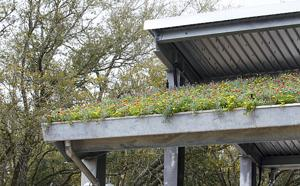 Roof flowers
