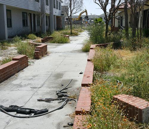 Public housing politics