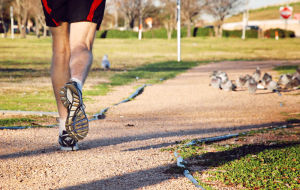 <p>A jogger runs on the lakeside trail at College of the Mainland in Texas City. According to recent studies, exercise not only helps to keep you in shape it also improves brain function.</p>