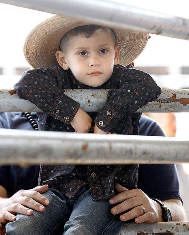 Young fairgoer watches Mutton Bustin'