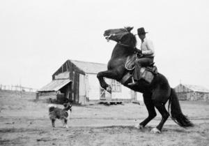 Campbell County's historic ranches: the Oedekoven Ranch