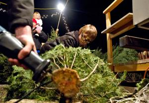Boy Scouts raise money for camp by selling holiday trees