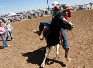 Young riders get a early lessons at Little Levi rodeo