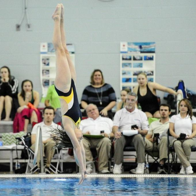 Gwinnett County Girls Diving Championships