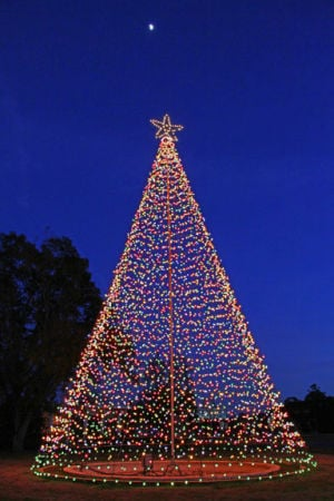 "<p><span><strong>THE MOON</strong> rises over the Vidalia Christmas tree at sunset </span><span class=""aBn""><span class=""aQJ"">Tuesday</span></span><span> night as temperatures dipped into the high 20s. (Photo by Rhett Powell)</span></p>"