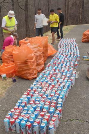 Parkway cleanup