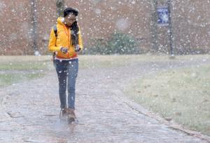 BHC 012214 Heavy Snow 06.jpg