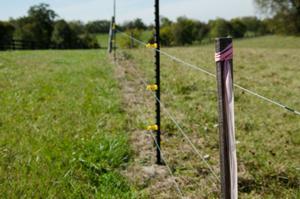 Blue grass pipeline comes to halt